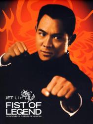 Tinh Võ Anh Hùng (1994)